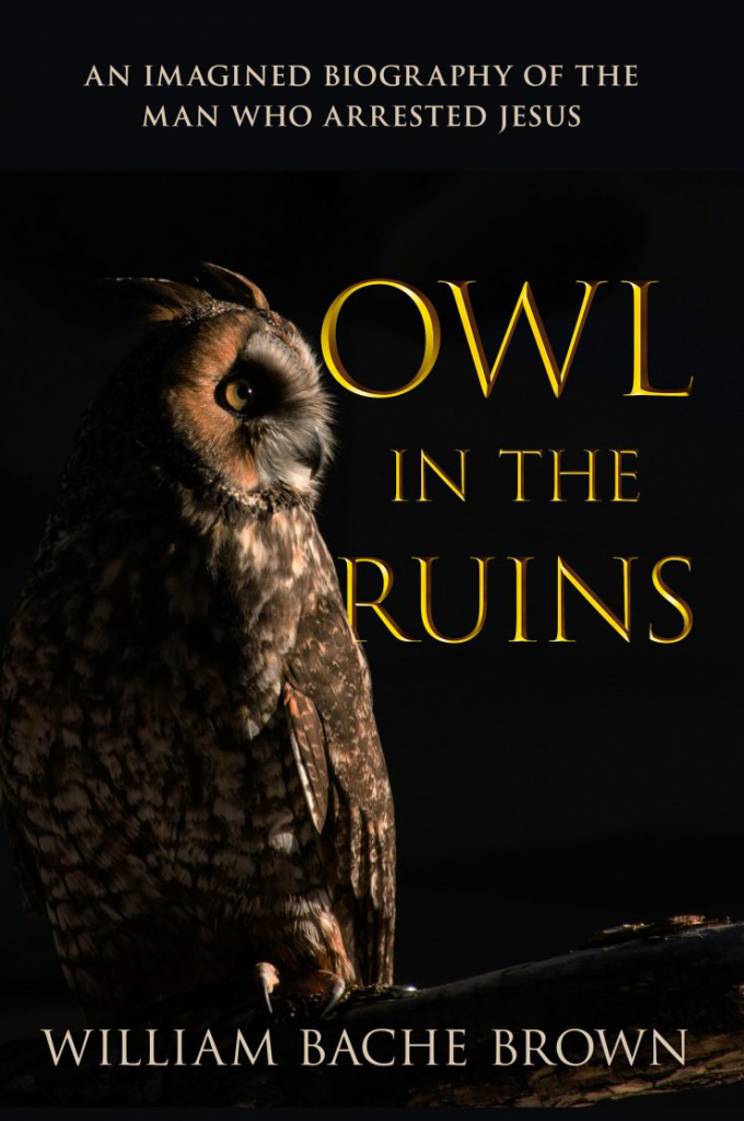 Owl in the Ruins Bill Bache Brown